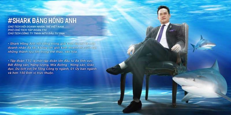 shark-ceo-dang-hong-anh-dha-corporation